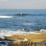久しぶりの日本海